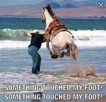 touchfoot